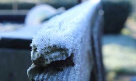 der erste Frost 2019
